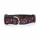 View Image 1 of Black Stars Dog Collar