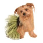 View Image 1 of Black and Yellow Dog Tutu