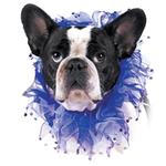 View Image 1 of Blue Rhinestone Dog Neck Scrunchy