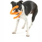 View Image 1 of Bumi Dog Toy - Orange