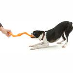 View Image 3 of Bumi Dog Toy - Orange