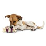 View Image 2 of Busy Buddy Bristle Bone Dental Toy
