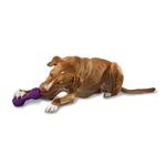 View Image 2 of Busy Buddy The Chuckle Dog Toy