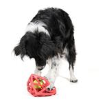 View Image 4 of Cagey Cube Dog Toy
