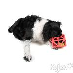 View Image 2 of Cagey Cube Dog Toy