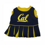 View Image 1 of California Golden Bears Cheerleader Dog Dress