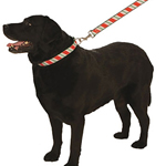 View Image 1 of Candy Cane Christmas Holiday Ribbon Leash