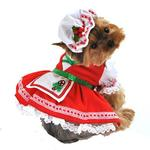 Candy Cane Cutie Dog Costume
