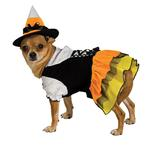 View Image 1 of Candy Corn Witch Dog Halloween Costume