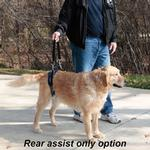 View Image 9 of CareLift Pet Lifting Harness - Full Body