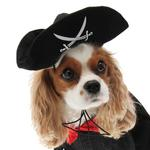 View Image 2 of Caribbean Pirate Dog Costume