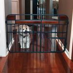 View Image 3 of Carlson Design Studio Expandable Dog Gate with Small Pet Door