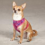 View Image 1 of Carolina Collection Dog Harness - Raspberry