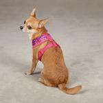 View Image 3 of Carolina Collection Dog Harness - Raspberry