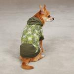 View Image 1 of Carolina Pullover Dog Hoodie - Green