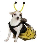 View Image 2 of Bee Dog Halloween Costume