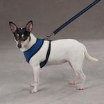View Image 3 of Casual Canine Mesh Dog Harness - Blue