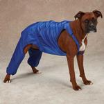 Casual Canine Nylon Dog Snow Bib - Nautical Blue