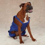 View Image 3 of Casual Canine Nylon Dog Snow Bib - Nautical Blue