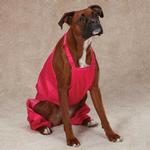 View Image 2 of Casual Canine Nylon Dog Snow Bib - Raspberry