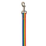 Casual Canine Puppy Pride Dog Leash - Rainbow