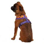 View Image 2 of Casual Canine Spooky Dog Harness - Orange and Purple