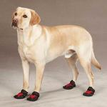 View Image 1 of Casual Canine X-Treme Weather Dog Boots