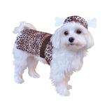 View Image 2 of Cavedog Prehistoric Halloween Dog Costume
