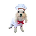 View Image 2 of Chef Halloween Dog Costume