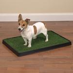 View Image 5 of Clean Go Pet Indoor Dog Potty