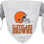 Cleveland Browns Mesh Dog Bandana