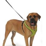 View Image 3 of Cloak & Dawggie Snap-N-Go Dog Harness - Citron Green with Black Fleece Trim