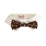 View Image 1 of Colin Polka Dot Dog Shirt Collar & Bow Tie
