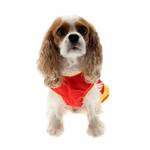 View Image 4 of Collegiate Cheerleader Dog Costume