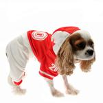 Collegiate Football Player Dog Costume - Red