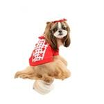 View Image 3 of Combo Gingham and Button Dog Hoodie by Puppia - Red