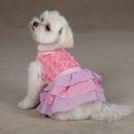 View Image 1 of Cotton Candy Dog Dress - Pink