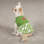 View Image 1 of Country Club Dog Dress by Zack & Zoey - Green