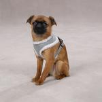 View Image 1 of Cozy Sherpa Dog Harness - Gray