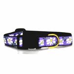 View Image 2 of Daisy Dog Collar by Up Country