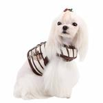 View Image 1 of Dakota Dog Harness by Pinkaholic - Brown