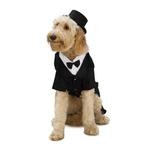 View Image 1 of Dapper Tuxedo Dog Halloween Costume