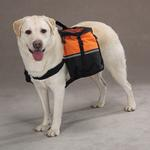 View Image 1 of Day Trippers Dog Backpack - Orange