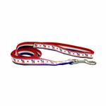Democratic Party Nylon Dog Leash