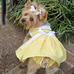 View Image 1 of Daisy Dog Dress Set with Panties and Leash - Yellow