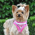 View Image 1 of Designer Choke-Free Step-In Dog Harness - Fandango Floral and Lace