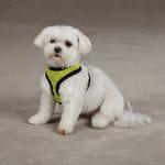 Dimple Plush Dog Harness - Parrot Green