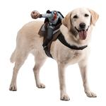 View Image 1 of Dog Riders Harness Halloween Costume - Headless Horseman