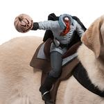 View Image 2 of Dog Riders Harness Halloween Costume - Headless Horseman