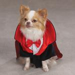 View Image 1 of Dogicula Costumes for Dogs by Casual Canine